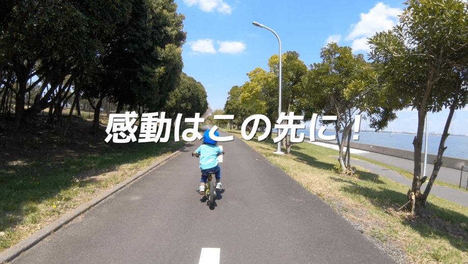 ストライダー14xで自転車デビューしたらおすすめしたいサイクリングコース&パーク関東編【スタッフブログ】